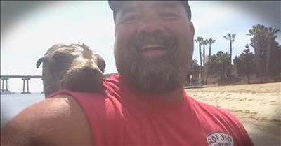 Friendly Seal Jumps On Man's Boat – AWW!