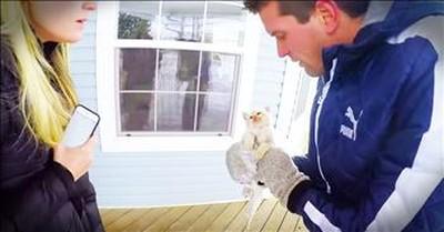 Frozen Kitten Gets A Nail-Biting Rescue