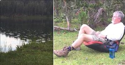 Water Bugs React To Man Shouting On Lake