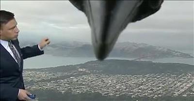 Bird Surprises Weatherman During Live TV Broadcast