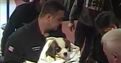 Officers Save Choking Puppy After Owner Rushes Into Police Station