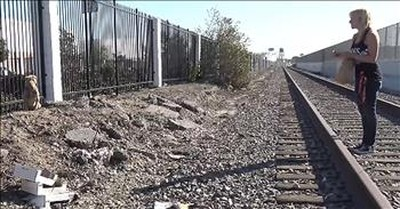 Rescuers Save Dog Living On Railroad Tracks
