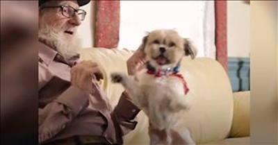 Rescue Dog Comforts Man With Dementia