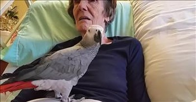 Parrot And Dying Owner Say Goodbye After 25 Years