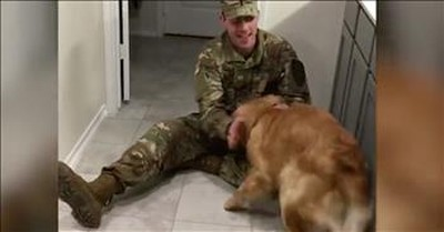 Adorable Dog Is Delirious After 'Best-Bud' Soldier Returns Home