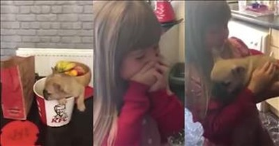 Heart-warming Video Shows Amazing Puppy Surprise for Young Girl