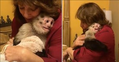 Capuchin Monkey Really Missed Grandma And Can't Hide Her Excitement