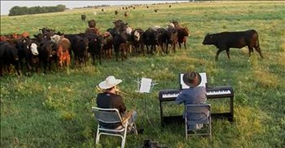 Farmer Derek Uses A Trombone And Piano To Bring In The Cows