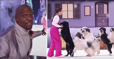 11-Year-Old Dog Trainer Alexa Lauenburger Brings Winning Act To AGT