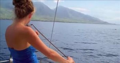 Whales Gather Around Boat When Woman Plays The Violin