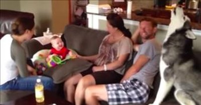Adorable Baby Laughs At Howling Husky
