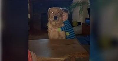 Golden Retriever Gives Toddler The Sweetest Hug