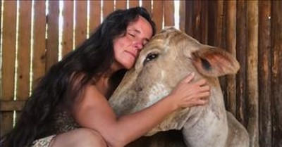 Mistreated Cow Finds Comfort In The Arms Of Her Rescuer