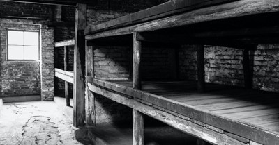 The bunkers of Birkenau, 2/3 of young adult Americans did not know 6 million jews were killed in the Holocaust.