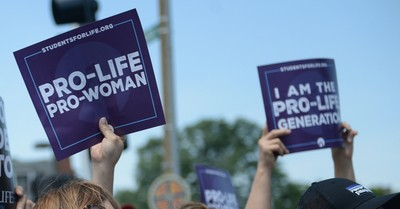 pro-life protest, pro-lifers is reportedly punched in the face