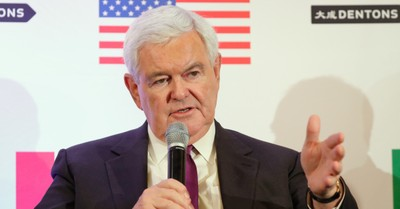 "Newt Gingrich, Gingrich calls Pence a ""profile in courage"" for standing up against the President"