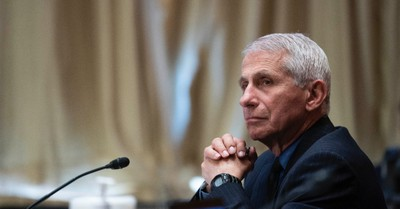 Dr. Anthony Fauci, Tucker Carlson criticizes the media over leaked Fauci emails