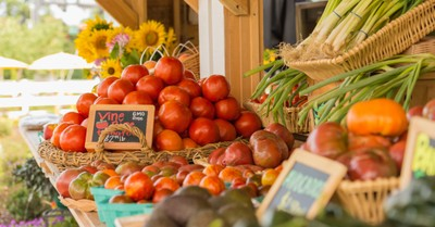 Farmers market, Farmers are in court after they were barred from participating in a famers market over their views on marriage