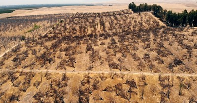 California drought, Prayer.com supports California farms suffering from drought