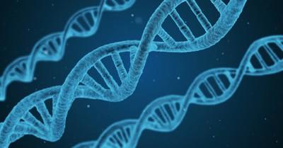 Inventors of CRISPR Win Nobel Prize, but Should We 'Rewrite the Code of Life?'
