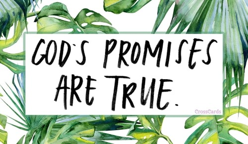 God's Promises Are True