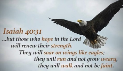 Renew my strength, O LORD