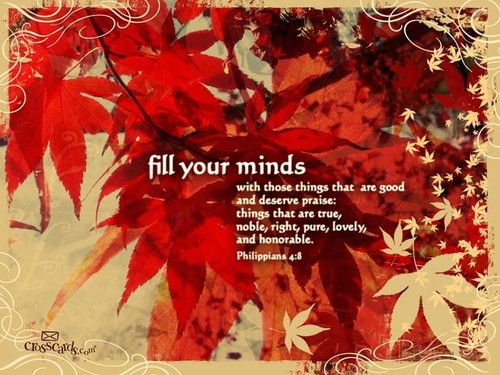 Fill Your Minds