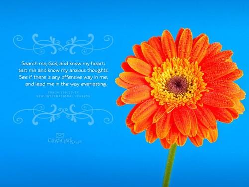 Psalm 138:23-24 NIV