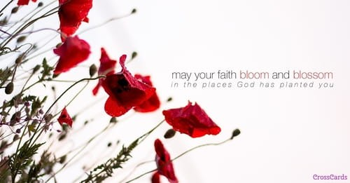 Bloom and Blossom ecard, online card