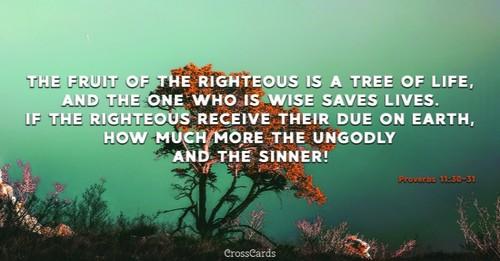 Proverbs 11:30-31