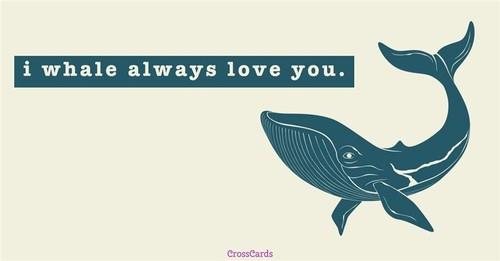 Whale ecard, online card