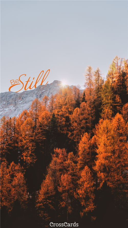 Be Still Fall Leaves ecard, online card