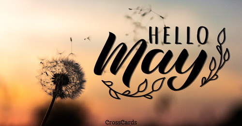 Welcome May!