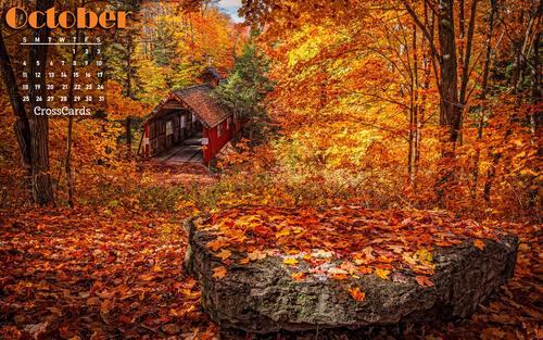 October 2020 - Autumn Colors ecard, online card