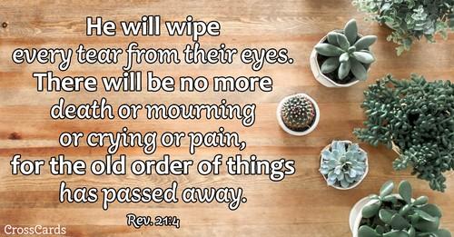 Revelation 21:4 - He Will Wipe away Every Tear