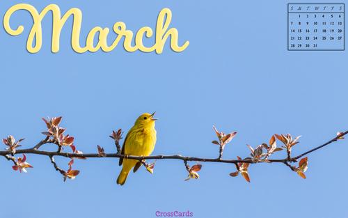 March 2021 - Birds ecard, online card