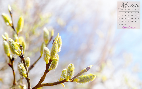 March 2021 - Spring Buds ecard, online card