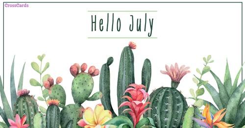 Hello July - Cacti