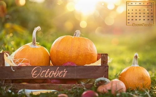 October 2021 - Pumpkins