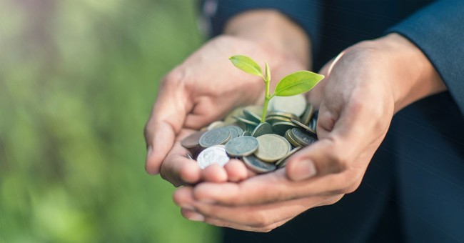 man's cupped hands holding lots of coins with seedling sprouting from center