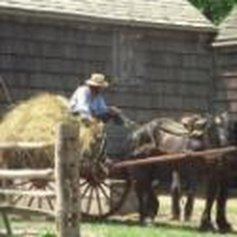 The Amish Entrepreneur: What Makes Him a Success?