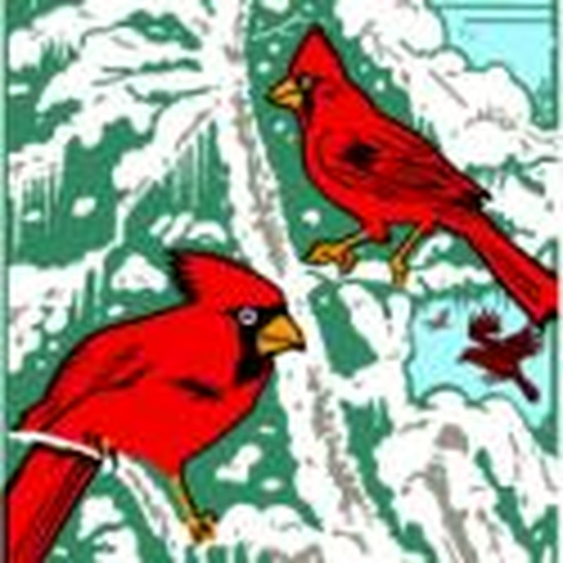 The Cardinal Duet: A Valentine's Day Rumination