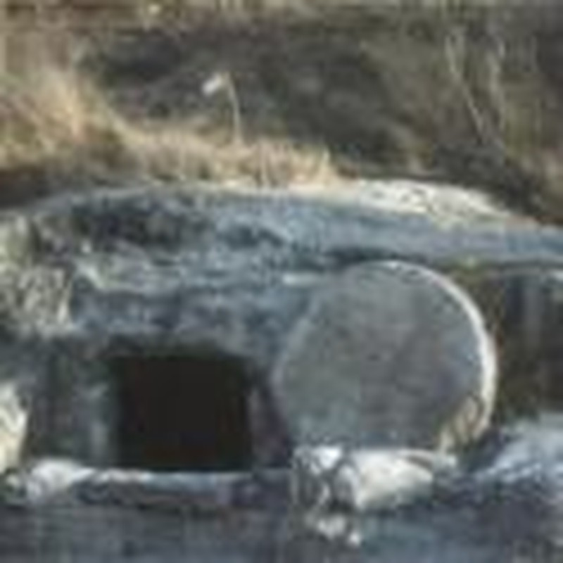 Discussing the <i>Evidence for the Resurrection</i> with Josh McDowell