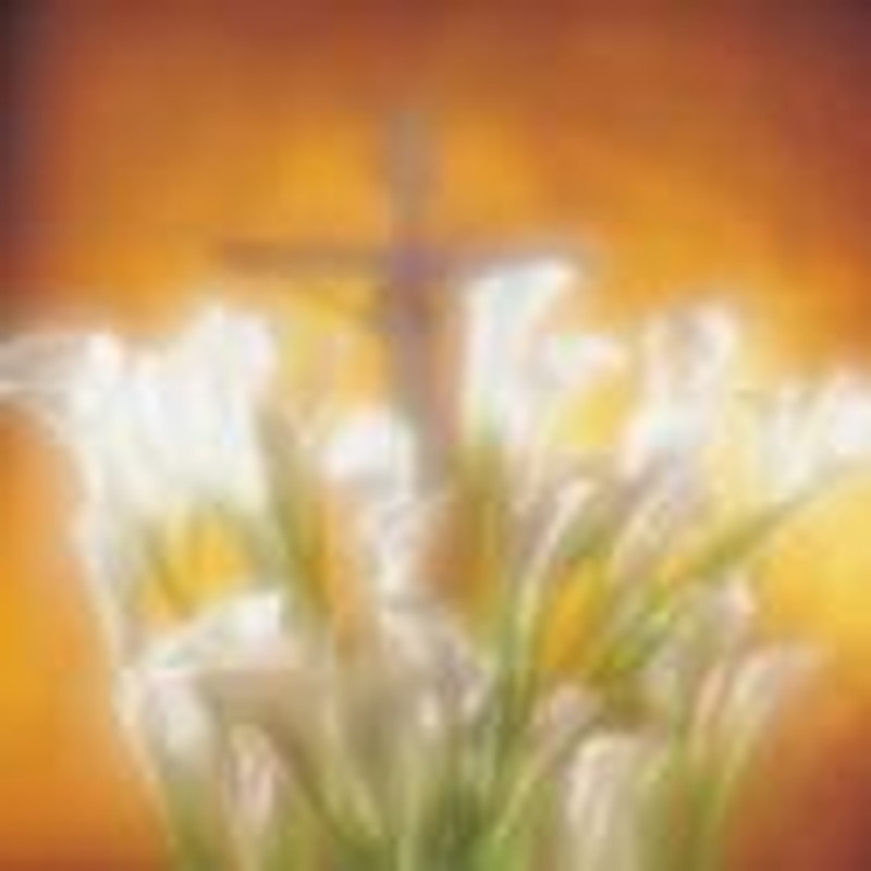 Not to Worry... Christ is Risen!