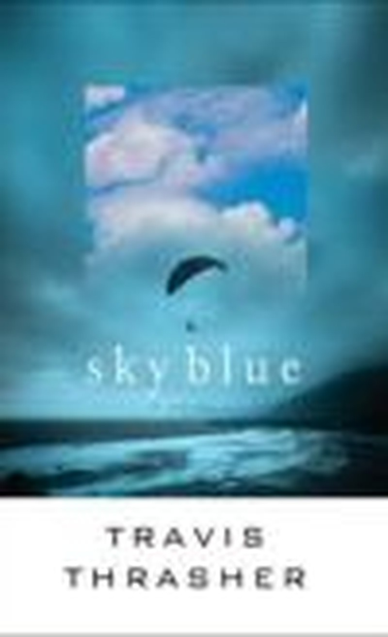 Questions of Loss and Grief Written in <i>Sky Blue</i>