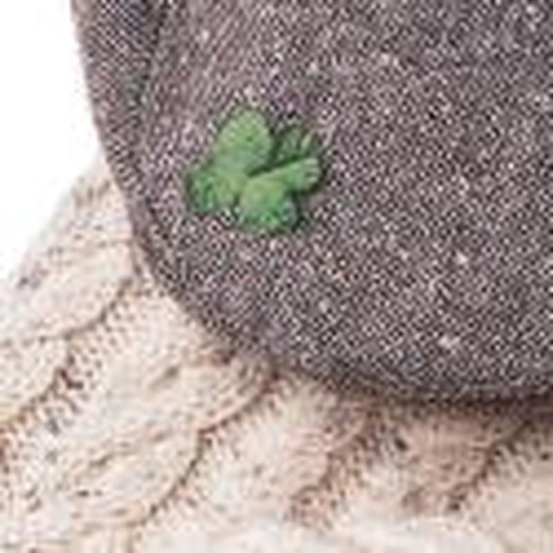 The Life of Saint Patrick