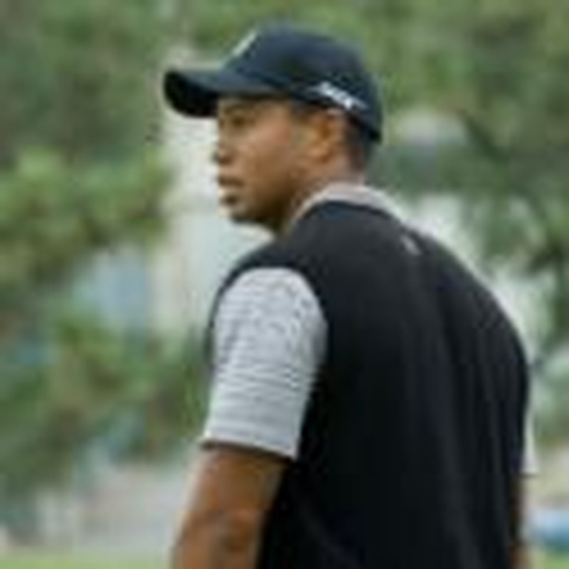 The Tiger (Woods) in You