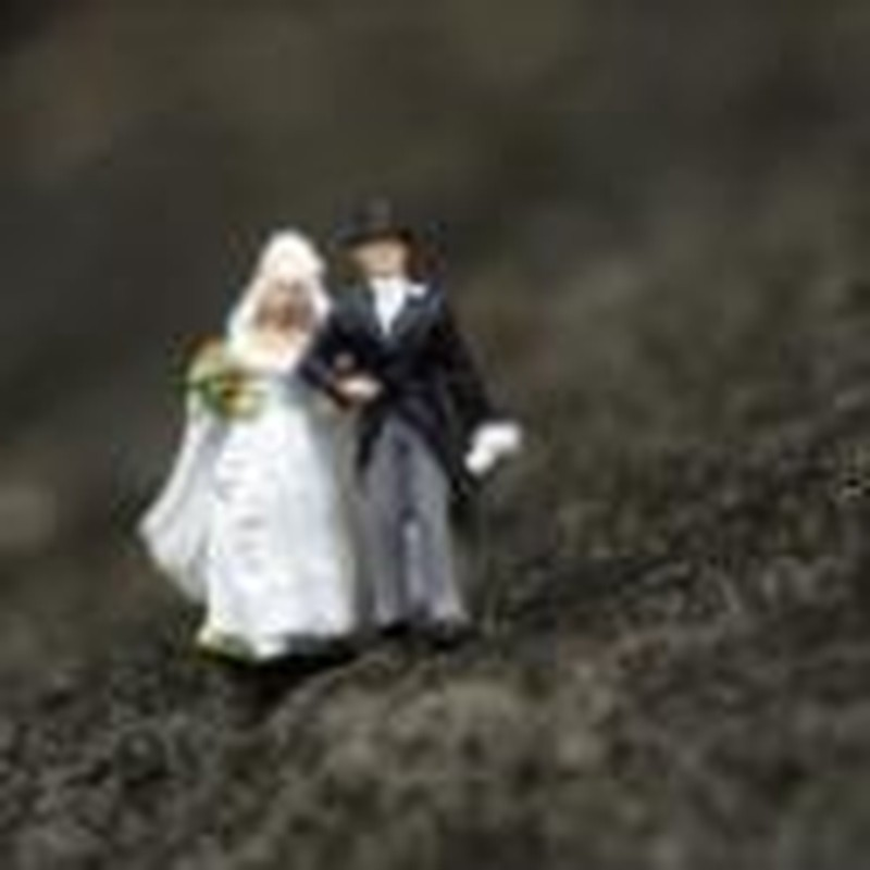 Will Marriage Endure?