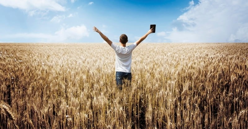 7 Bible Reading Plans for 2015