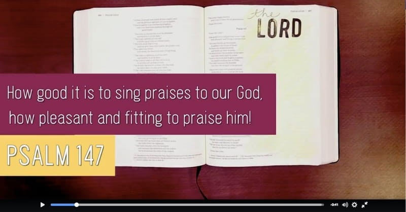 The LORD Delights in Us